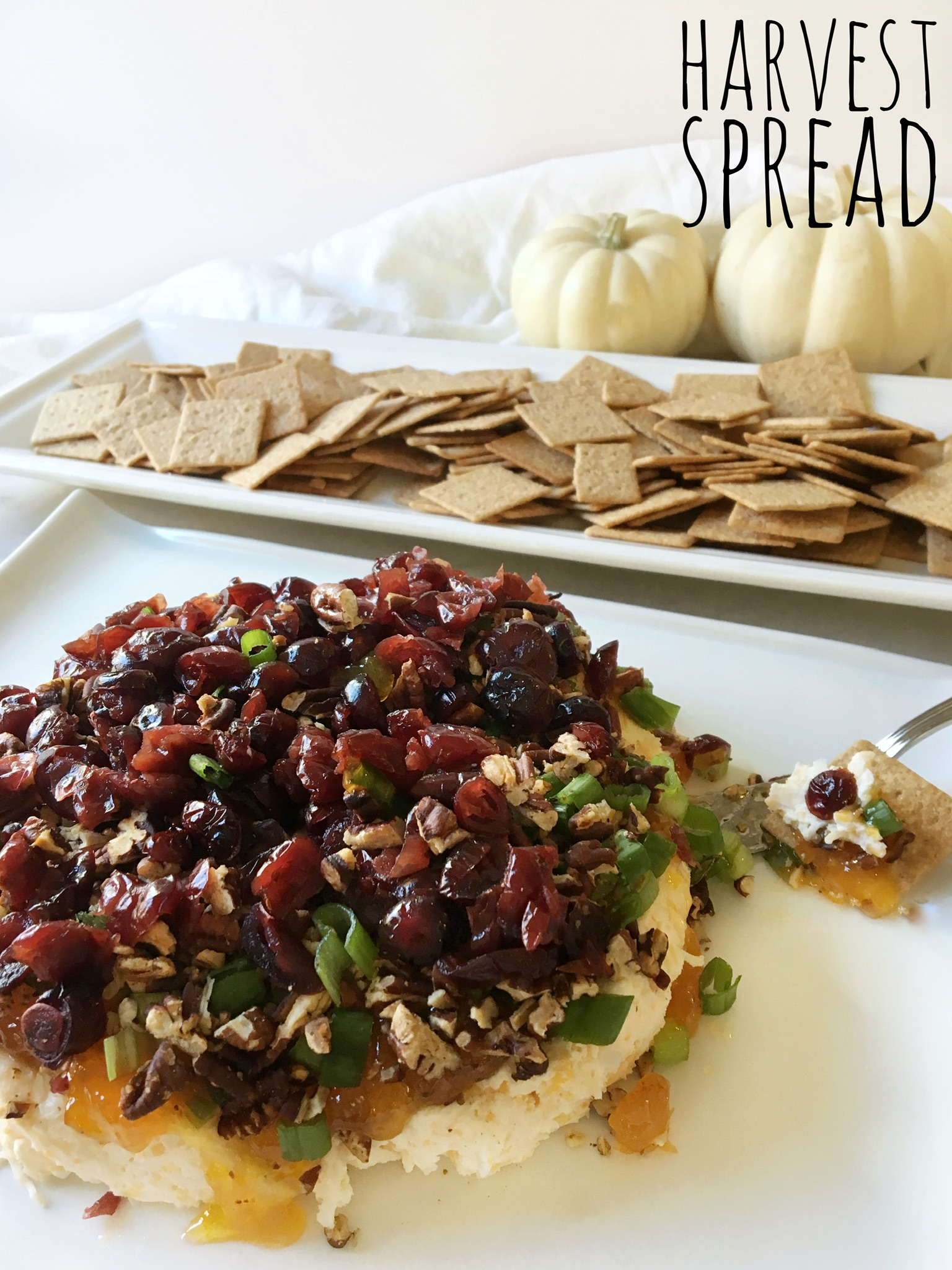 A harvest blend of cheeses, nuts and cranberries to serve with crackers