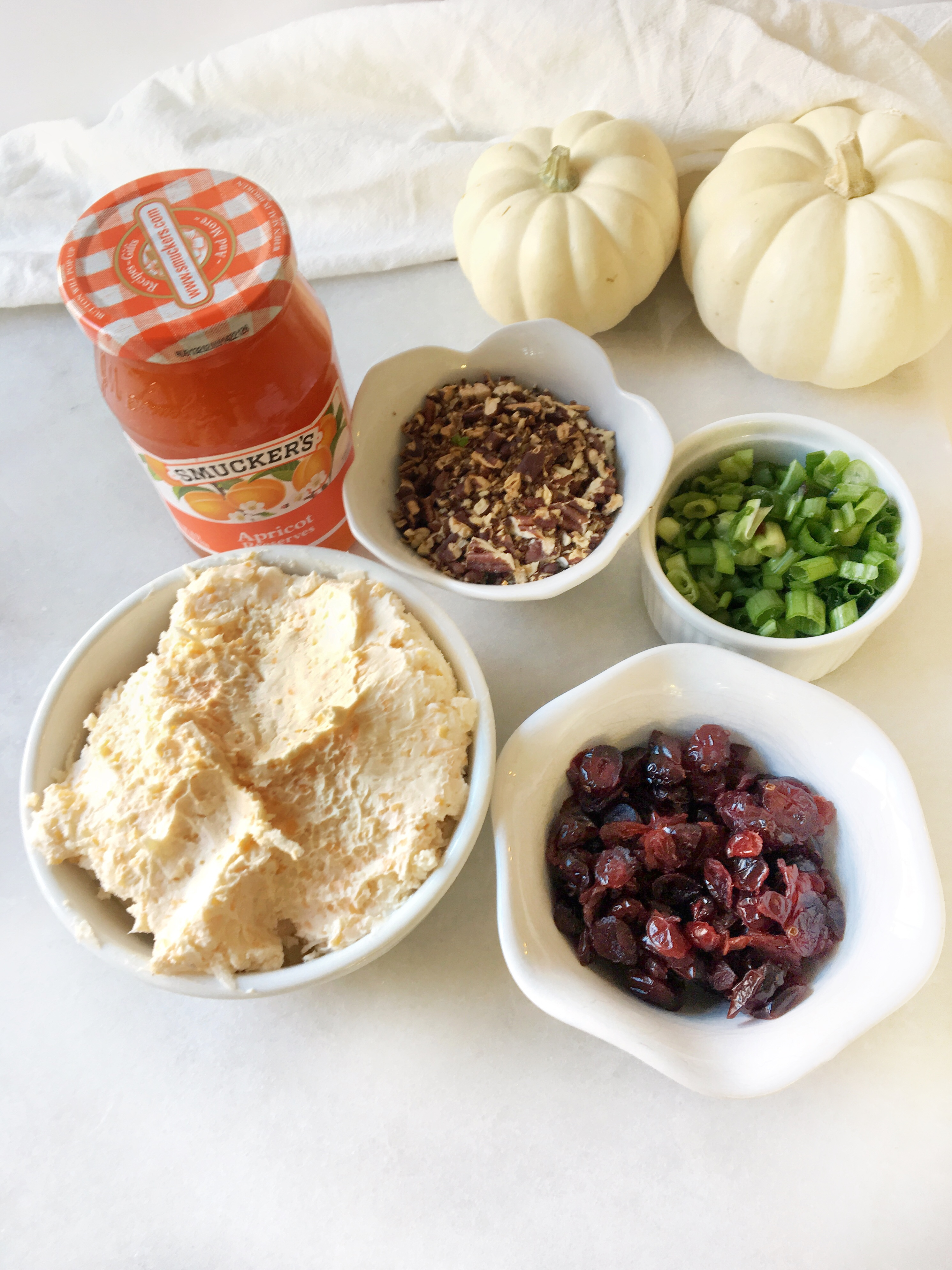 cheese blend, apricot preserves, toasted pecans, green onions and dried cranberries in bowls