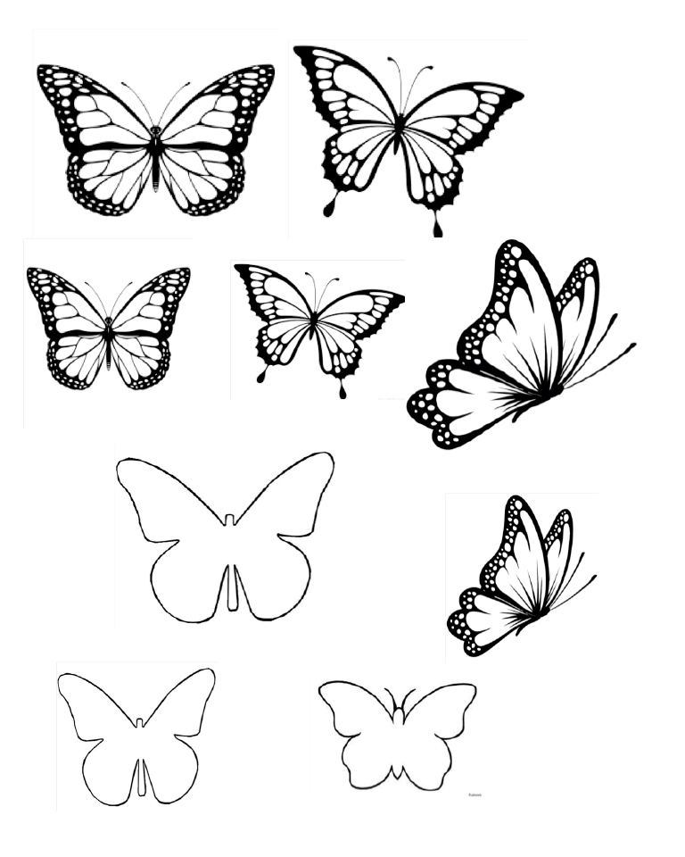 printable butterfly template for piping white chocolate butterflies
