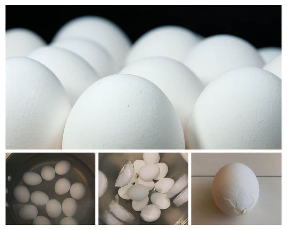 process picture collage-how to hard boil eggs