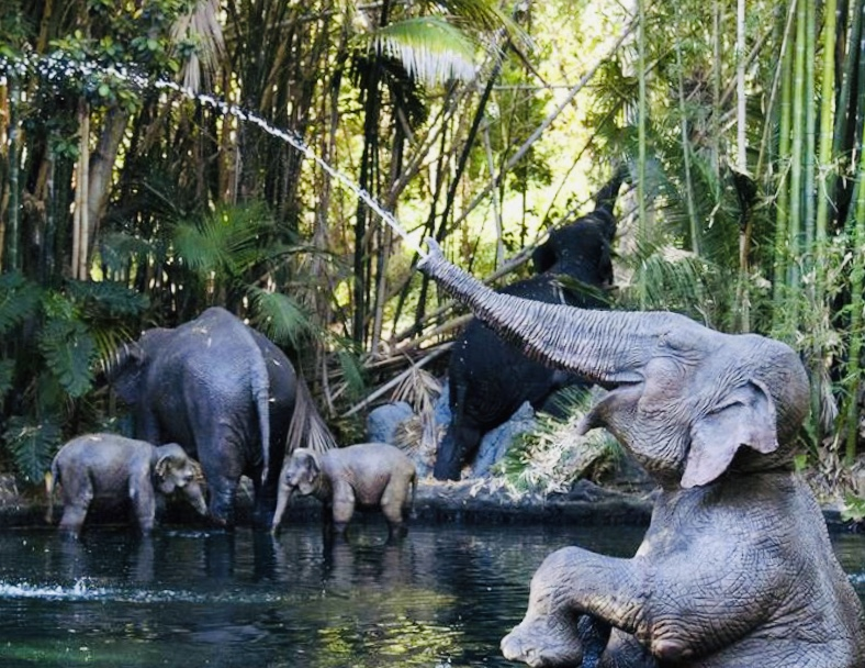 Jungle Cruise ride at Disneyland
