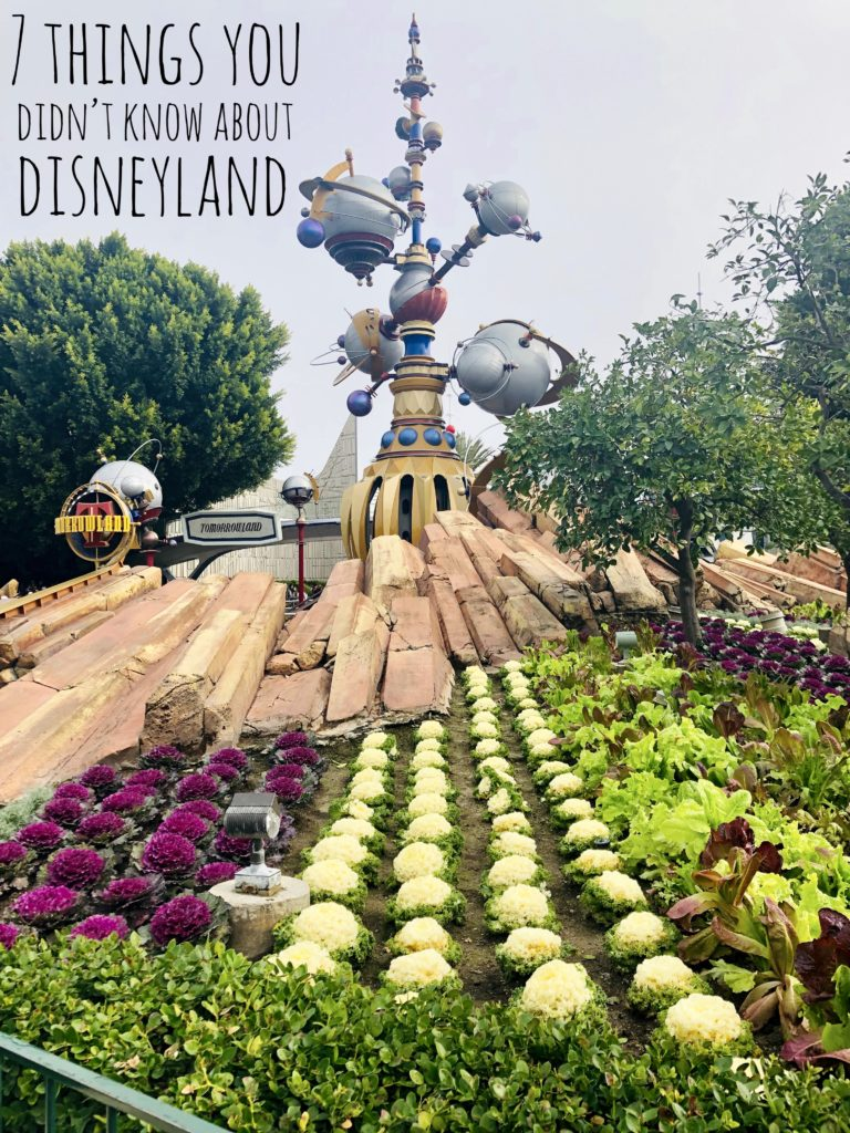Read about 7 Things you didn't know about Disneyland